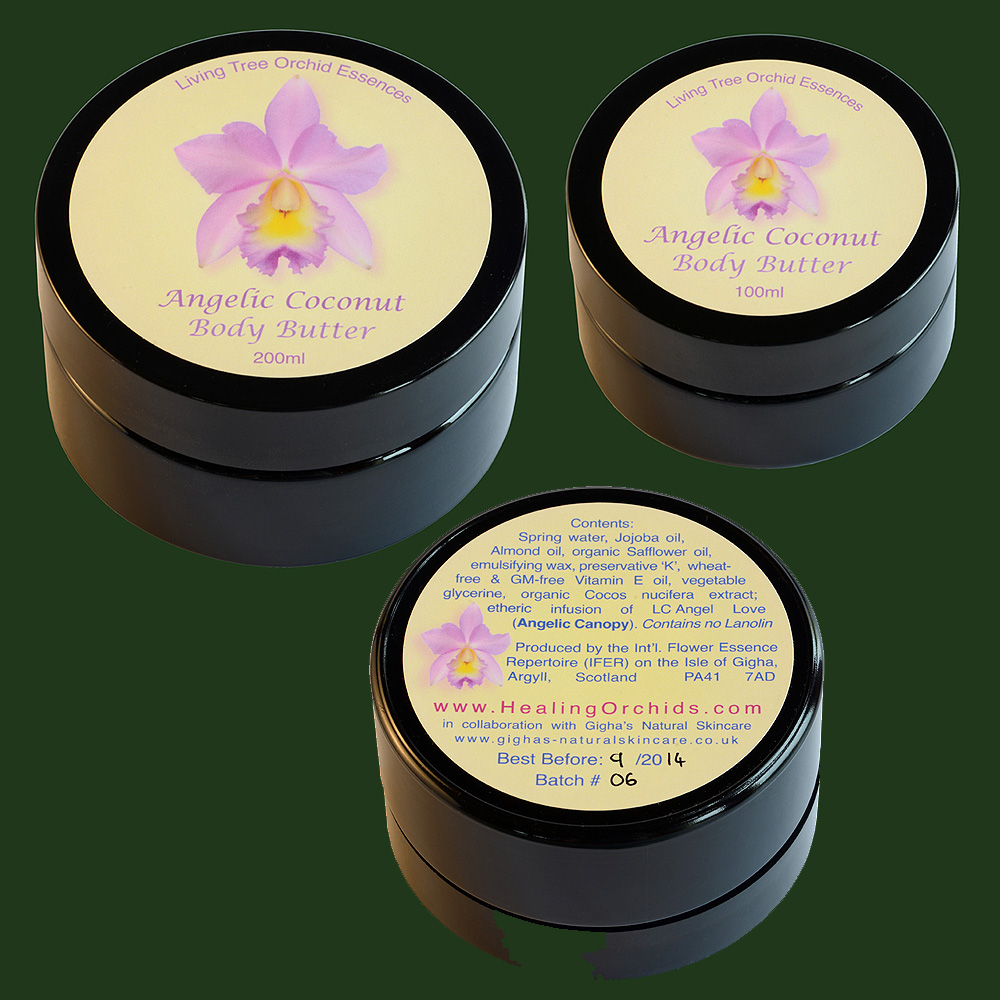 angelic-coconut-body-butter